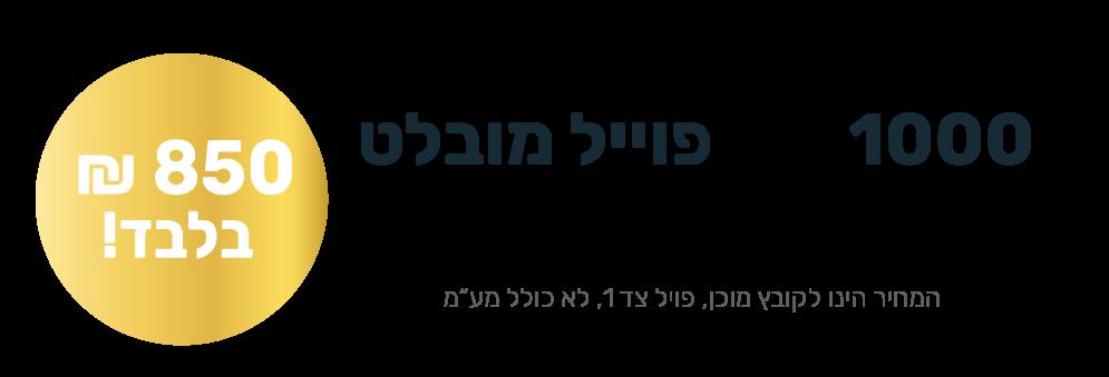 Banner_Mivtza_bc-bold-left (1)