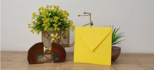 מעטפה צבעונית 83-05 limon