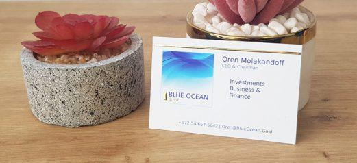 כרטיסי ביקור יוקרתי לבן עם לוגו כחול