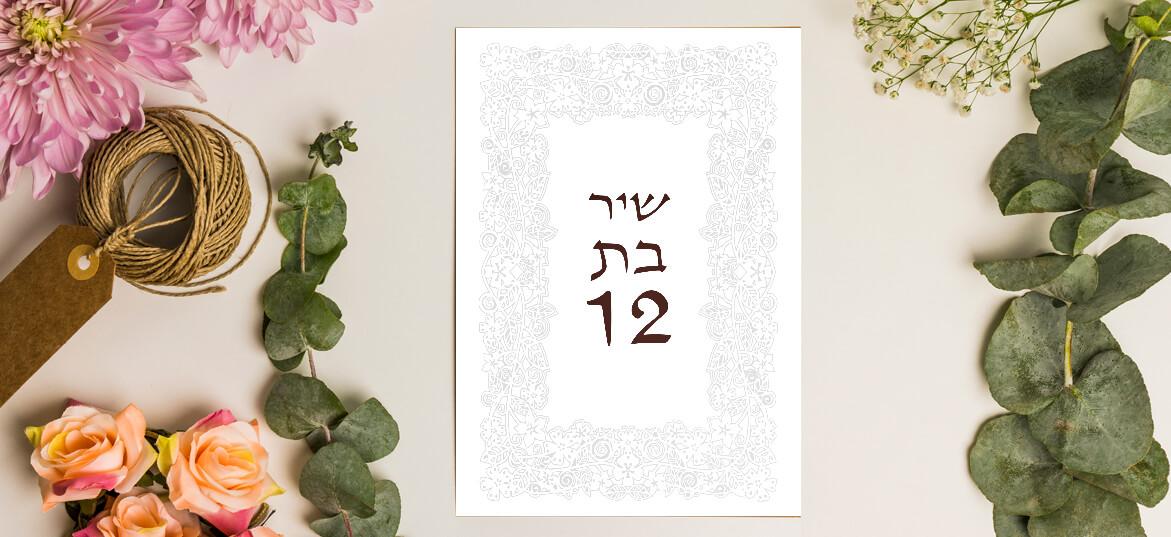 הזמנות בת מצווה – דתי 4